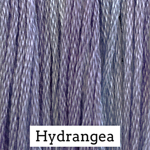 Hydrangea- CCW