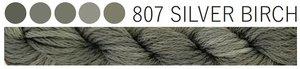 Silver Birch CGT 807