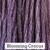 Blooming Crocus
