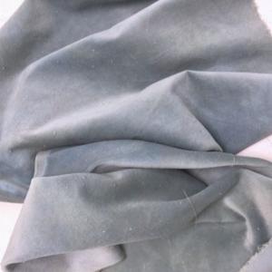 Velveteen Blue Fescue - Lady Dot