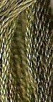 Dried Thyme GA 0110