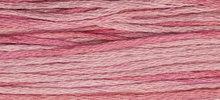 Camellia WDW 2276