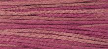 Raspberry WDW 1336