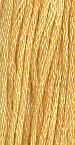 Butternut Squash 7020