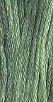 Mistletoe 0113