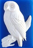 needleminder Snowy owl
