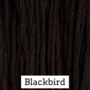 Blackbird CC