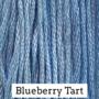 Blueberry Tart CCW