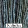 Dublin Bay CCW