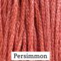 Persimmon- CCW