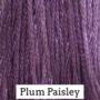 Plum Paisley CCW