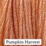 Pumpkin Harvest CCW
